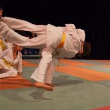 photos-judo-sept-2016-13-copier
