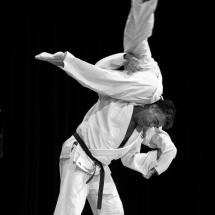 photos-judo-sept-2016-18-copier