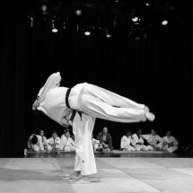 photos-judo-sept-2016-21-copier