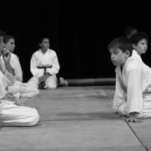 photos-judo-sept-2016-22-copier