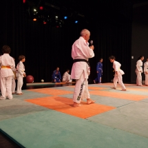 photos-judo-sept-2016-4-copier
