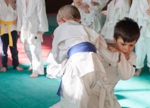 judo-15-fvrier-2017-35-copier