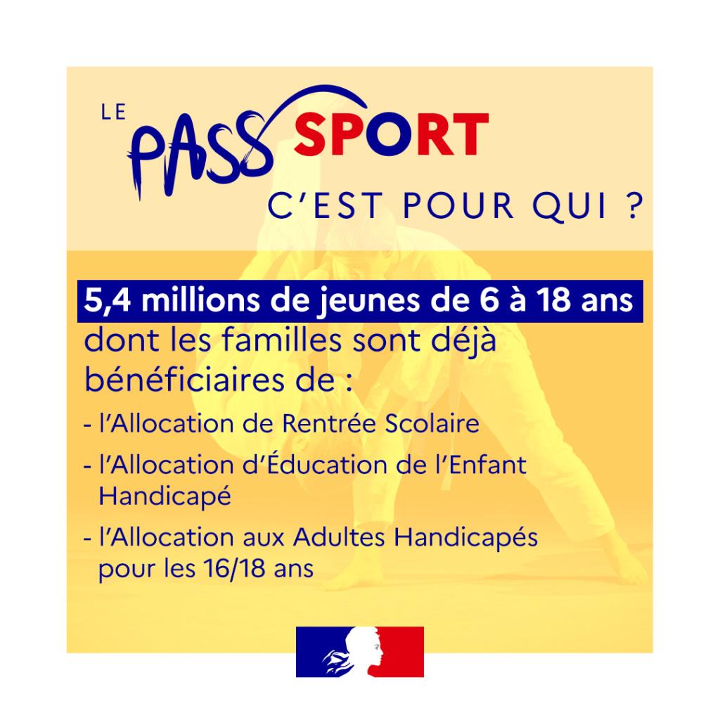 passsportvignette2_jaune